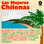 Las Mejores Chilenas de Various Artists