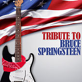 Bruce Springsteen, Tribute To de Various Artists