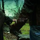 Here de Nicolay