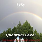 Life by Quantum Level
