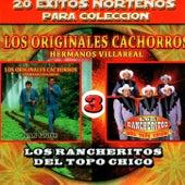 20 Exitos Nortenos Para Coleccion by Various Artists