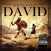 David by Young Gully
