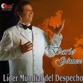 Líder Mundial del Despecho by Dario Gomez