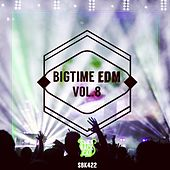 Bigtime EDM, Vol. 8 by Various Artists