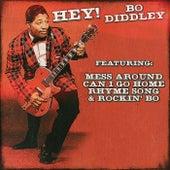 Bo Diddley - Hey! Bo Diddley de Bo Diddley