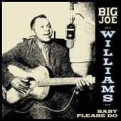 Big Joe Williams - Baby Please Do de Big Joe Williams