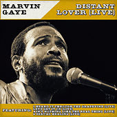 Marvin Gaye - Distant Lover (Live) by Marvin Gaye
