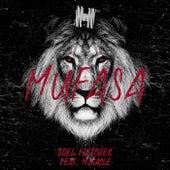 Mufasa von Joel Fletcher