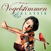 Vogelstimmen & Klassik/Birdsongs & Classical Music by Various Artists