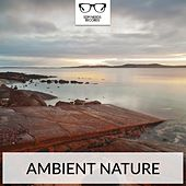 Ambient Nature - EP by Various Artists