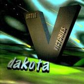 Little Victories by Dakota