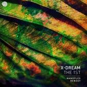The 1st (Nanoplex Reboot) by X-Dream