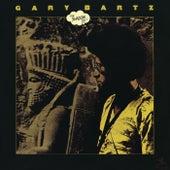 The Shadow Do! by Gary Bartz