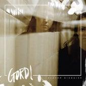 Clever Disguise EP de Gordi