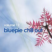 Chill Out Vol. 12 von Various