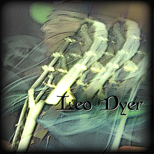 Leo Dyer by Leo Dyer