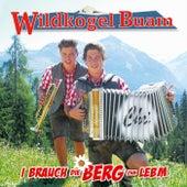 I brauch die Berg zum Lebm von Wildkogel Buam