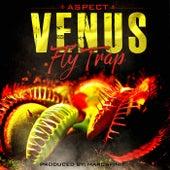 Venus Fly Trap by Aspect