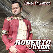 Estaba Equivocado by Roberto Junior