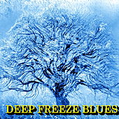 Deep Freeze Blues de Various Artists