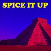 Spice It Up de Various Artists