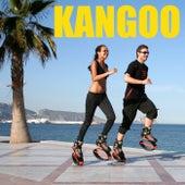 Kangoo by Various Artists