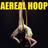 Aerial Hoop de Various Artists