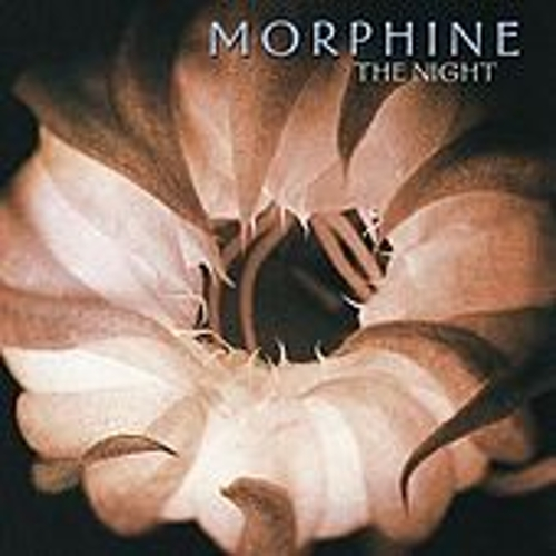 The Night by Morphine