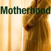 Motherhood by Various Artists