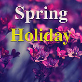 Spring Holiday de Various Artists