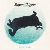 Thixotropic by Sugar