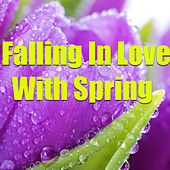 Falling In Love With Spring by Various Artists