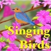 Singing Birds von Various Artists