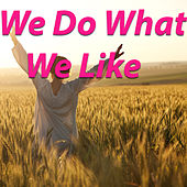 We Do What We Like by Various Artists