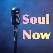 Soul Now de Various Artists