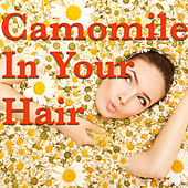Camomile In Your Hair by Various Artists