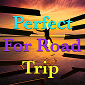 Perfect For Road Trip by Various Artists