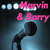 Marvin & Barry by Various Artists