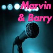 Marvin & Barry de Various Artists