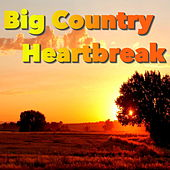 Big Country Heartbreak by Various Artists
