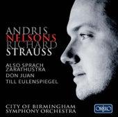 R. Strauss: Also sprach Zarathustra, Op. 30, TrV 176 de City Of Birmingham Symphony Orchestra