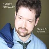 Blame It on My Youth by Daniel Schwait