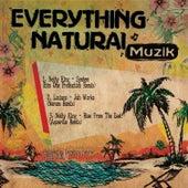 Everything Natural Muzik by Various Artists