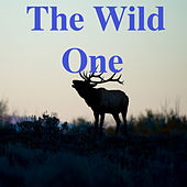 The Wild One by Various Artists