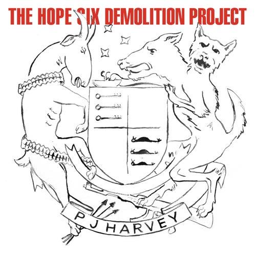 The Hope Six Demolition Project von PJ Harvey