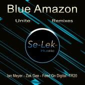 Unite Remixes by Blue Amazon