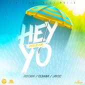 Hey Yo Riddim by Various Artists