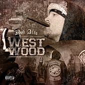 West Wood de Hooli Auto