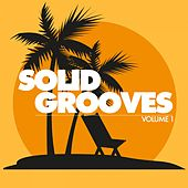 Solid Grooves (25 Tasty Deep House Cuts), Vol. 1 de Various Artists