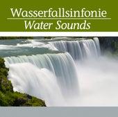 Wasserfallsinfonie by Astor Piazzolla